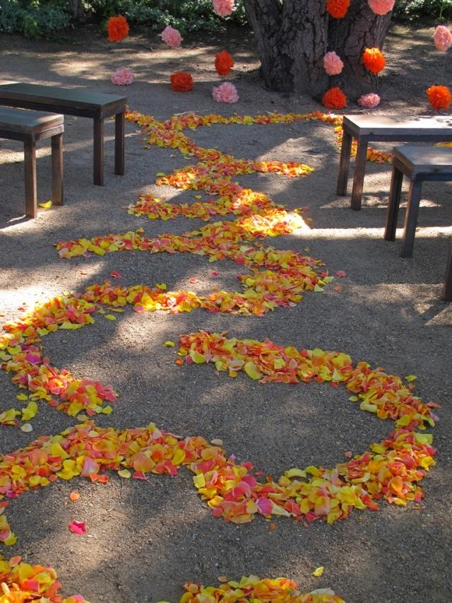 Kate's Blossoms, Quarryhill, Sunlit Petal Path