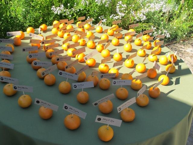 Quarryhill, Clementine Escort Cards